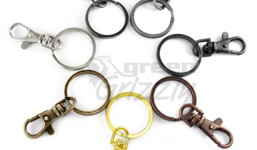 A circle of split-rings (as found on keyrings) in a variety of colours. Each has a clip attached to it.